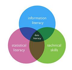justgrimes - data literacy