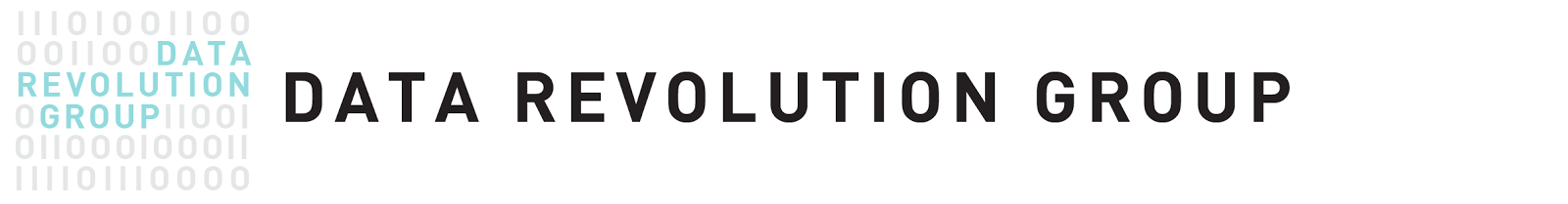 Data Revolution Group